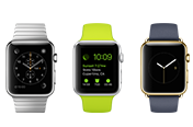 Apple Watch Basics