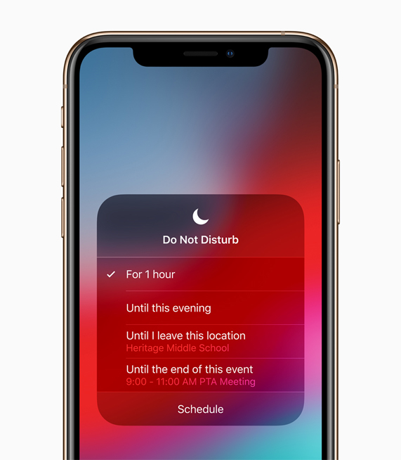 The Do Not Disturb screen available with iOS 12.