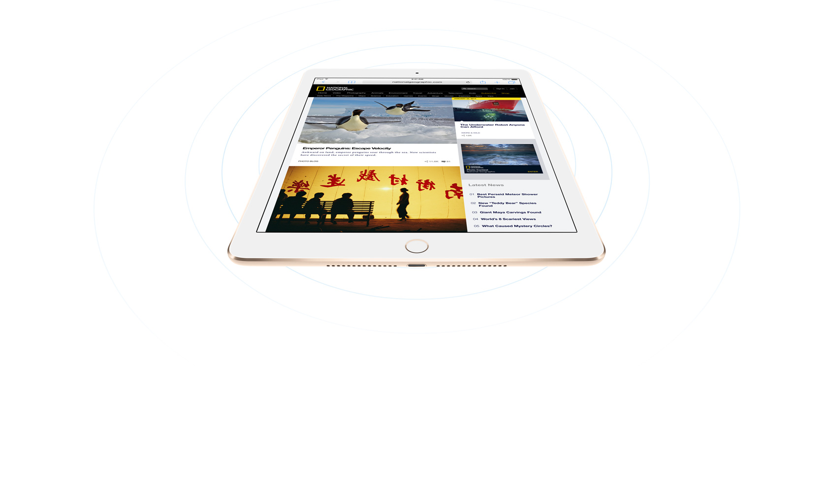 how to make phone calls from ipad air cellular